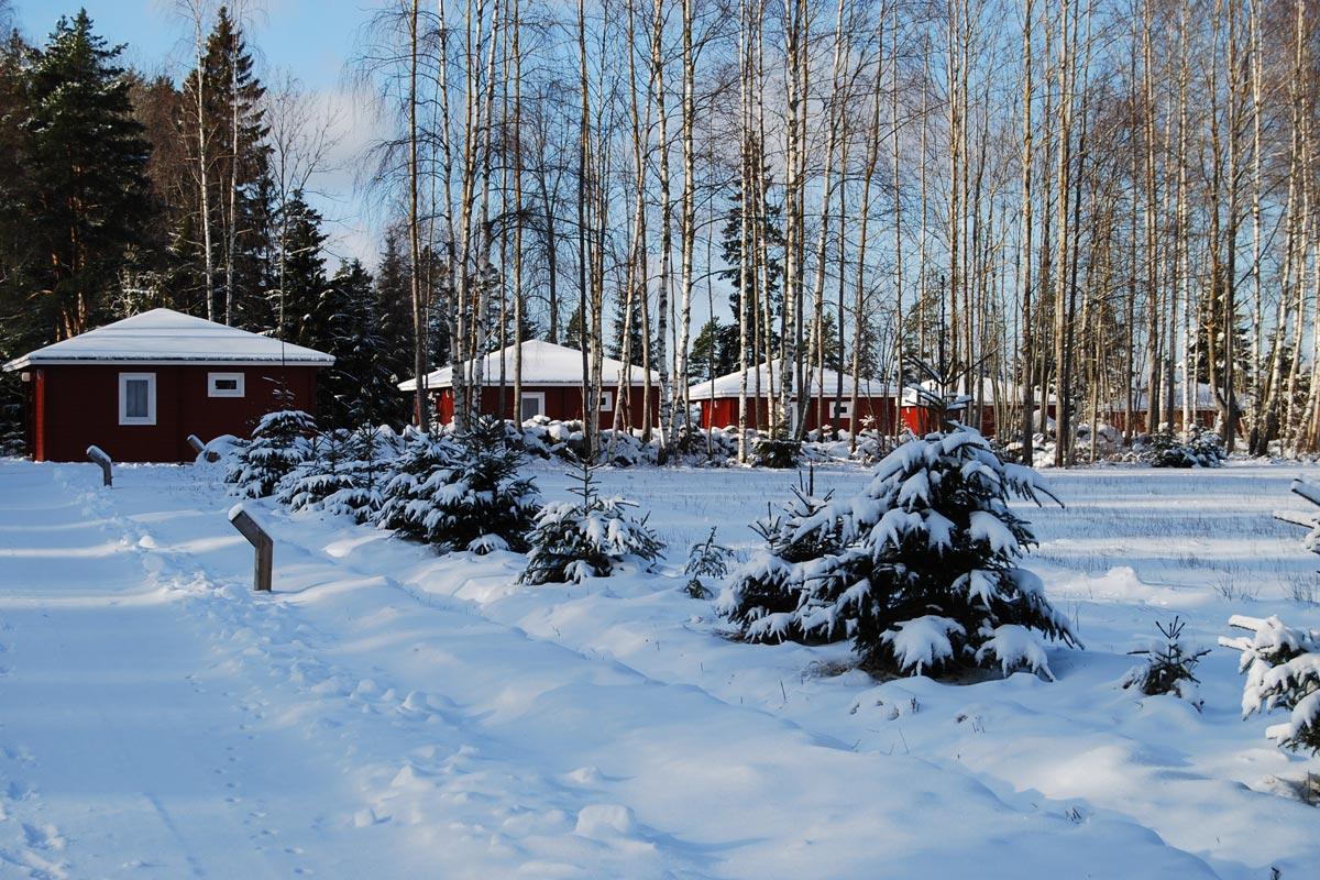 Hamgarden winter